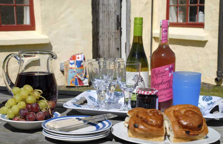 St Davids, Pembrokeshire - family holiday home with private gardens