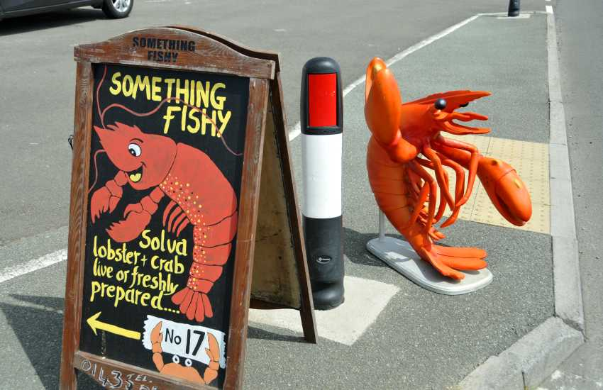 Treat yourselves to fresh Lobster and crab from 'Something Fishy' in Upper Solva