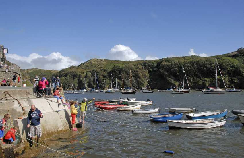 Solva Harbour - a great spot to do some crabbing at high tide