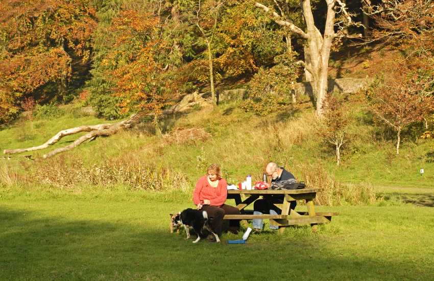 Autumn in Colby Gardens (N.T) - wonderful woodland walks, tea rooms and a variety of family activities to enjoy throughout the year