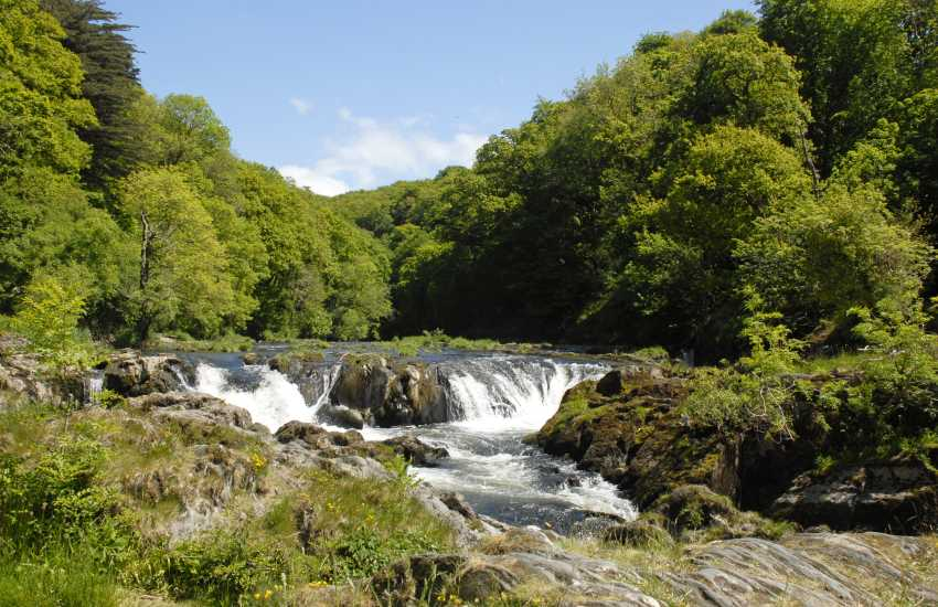 The Teifi River Falls in the picturesque village of nearby Cenarth - watch the salmon leap up-stream during September