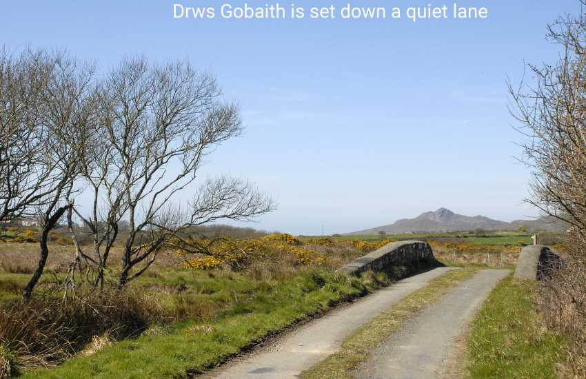 Step outside onto The Dowrog Common - wonderful walking over wild open moorland