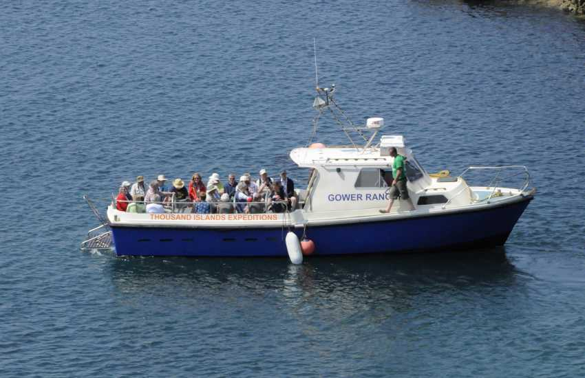 Boat Trips by Thousand Islands Expeditions, Voyages of Discovery, Ramsey Island Cruises and Venture Jet all explore the stunningly beautiful  North Pembrokeshire coast and its extraordinary wildlife