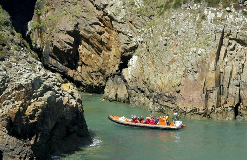 Explore the caves, bays and gorges of Ramsey Island off the North Pembrokeshire Coast