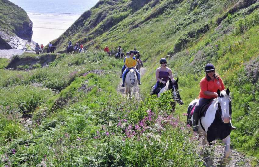 Druidston is a favourite with horse riders - hire a horse at nearby Nolton Haven Stables and gallop through the waves!
