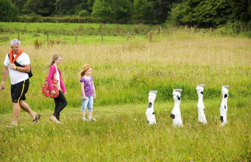 Explore two miles of paths, idyllic gardens and a rather interesting children's woodland trail at Picton Castle