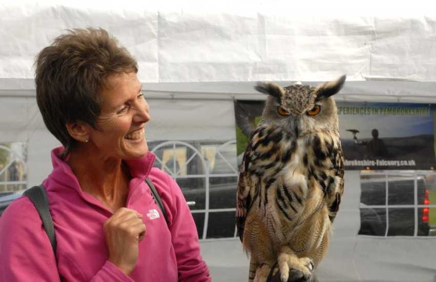 Pack a picnic and enjoy a day out at one of the local summer shows - Sue with 'Popeye' the European Eagle Owl