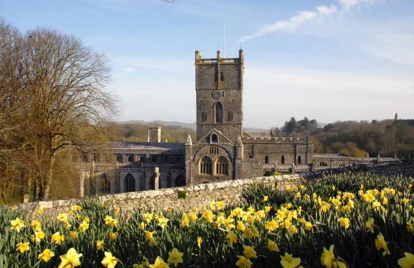 Magnificent St Davids Cathedral set in the heart of Britain's smallest city. Enjoy interesting shops, galleries, crafts and a choice of places to eat and drink