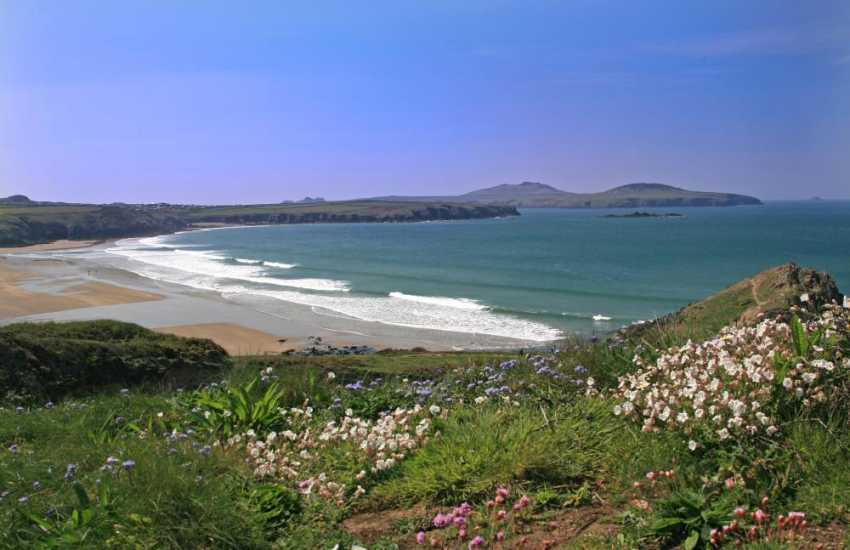 Whitesands beach near St Davids, viewed from the coastal path which is blooming with wild flowers in the spring