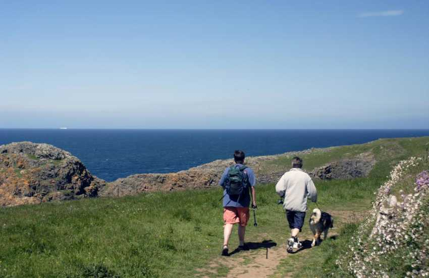 The stunning Pembrokeshire Coast Path offers fabulous cliff top walks - most cottage's welcome dogs