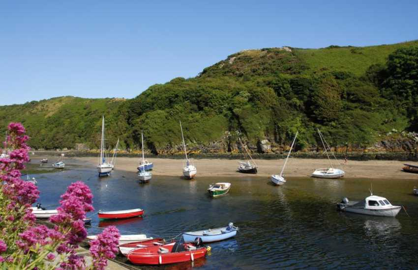 Pretty sailing boats on the Solva River