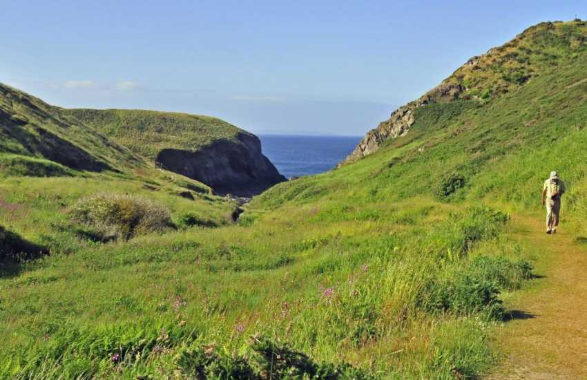 Stunning views and breathtaking cliff walks at Porth y Rhaw situated just west of Solva - where an extinct marine fossil was found - evidence of smaller fossils can still be found.