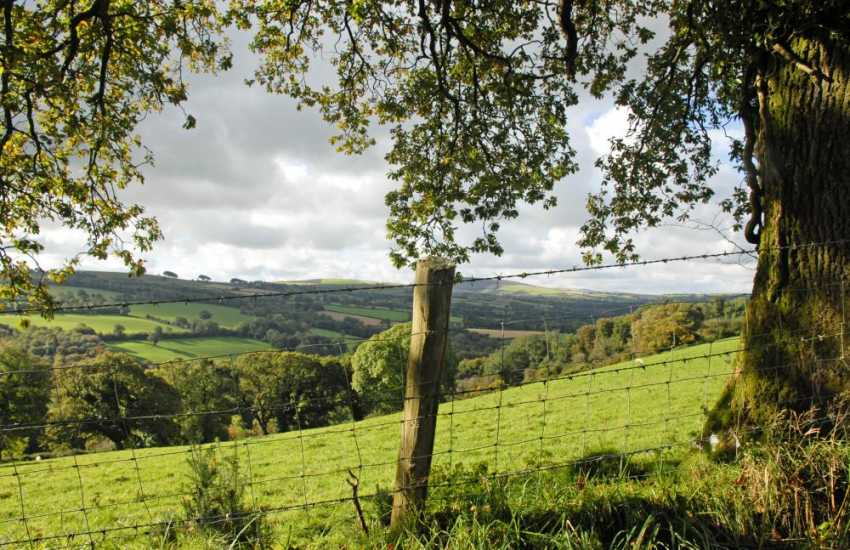 Explore tranquil Aeron Valley's lush  green pastureland, beautiful surrounding countryside, sleepy villages and traditional market towns