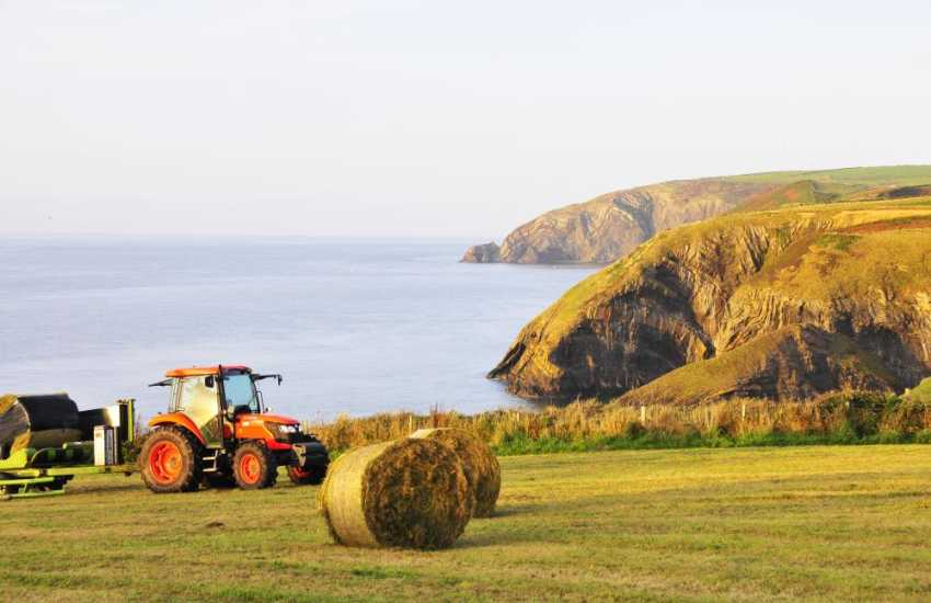 The Pembrokeshire Coast Path offers fabulous scenery and cliff top walking