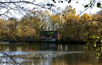 Water Lily Lodge in Essex
