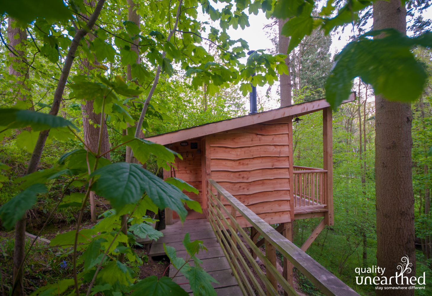 Walkway through the woods to the boutique wooden cabin for 3