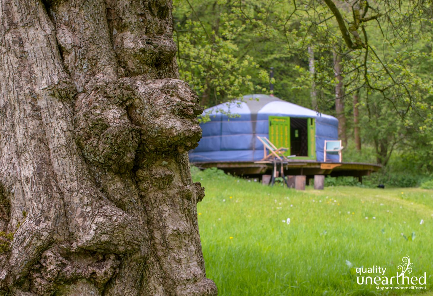 This is Eilian Mongolian yurt, perfect for a family of 5