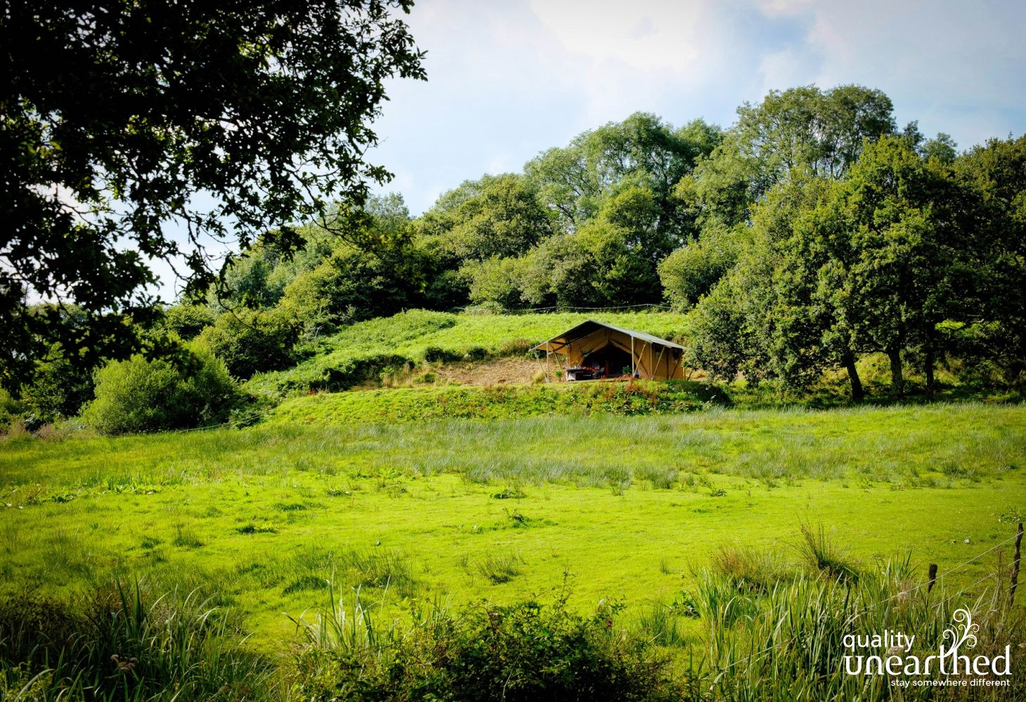 Oak Apple Lodge in Dorset