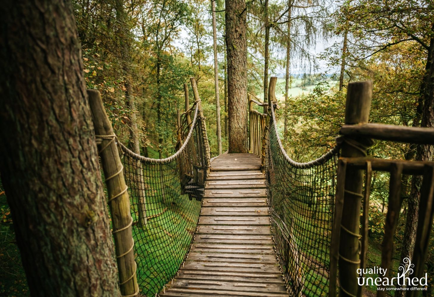 A wooden rope bridge leads away from a welsh treehouse, deeper into the woods