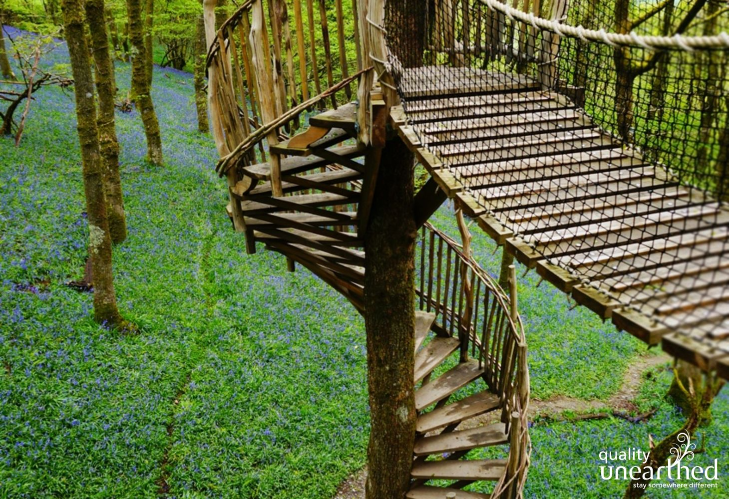 A wooden spiral staircase winds its way from the rope bridge to the forest floor, decked out in bluebells. Photo taken from the family treehouse