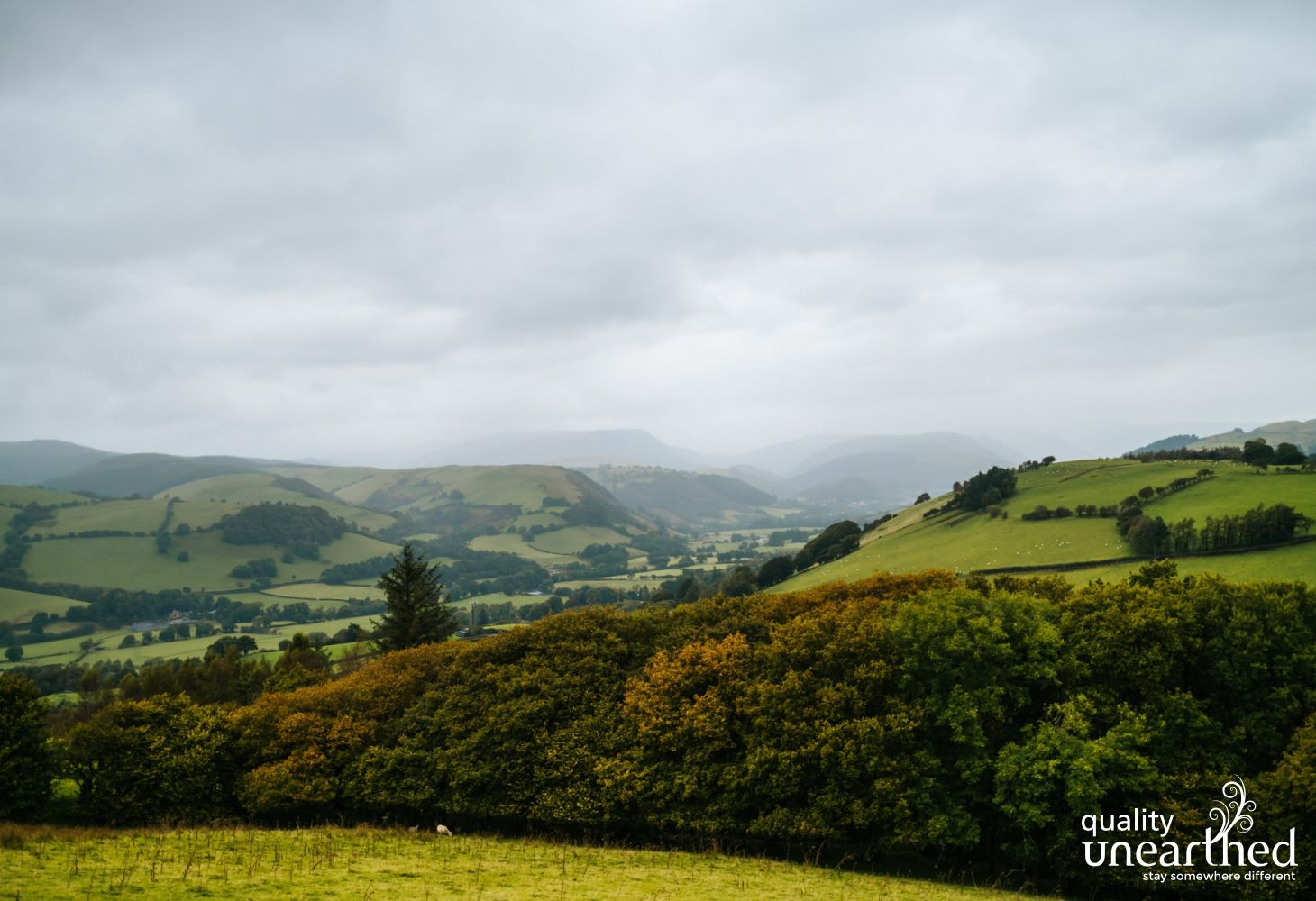 Scenes near the treehouses of the Mid Wales countryside and the Cader Idris mountain range
