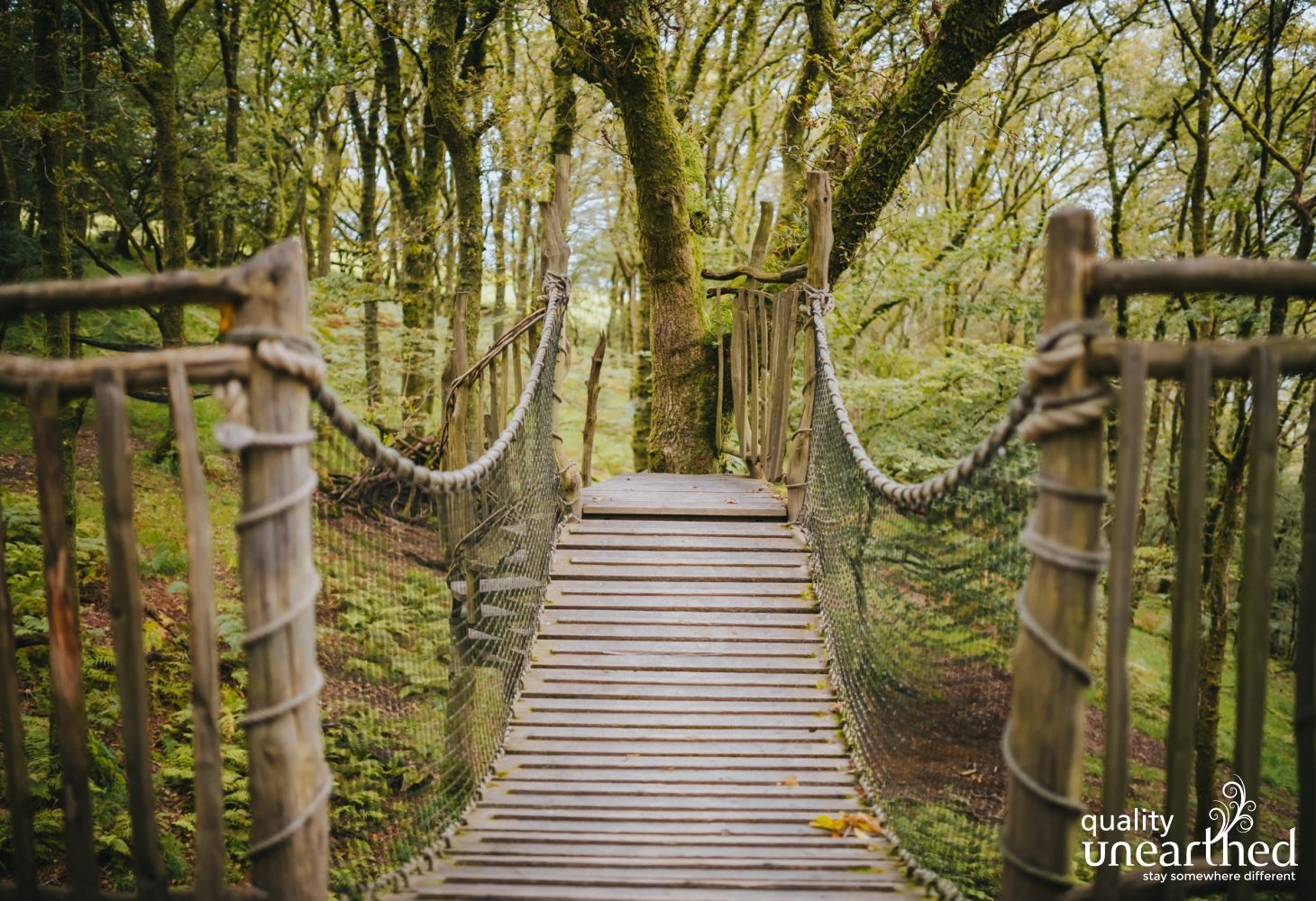 Classic rope bridge leading from this welsh family treehouse into the woods which surround you