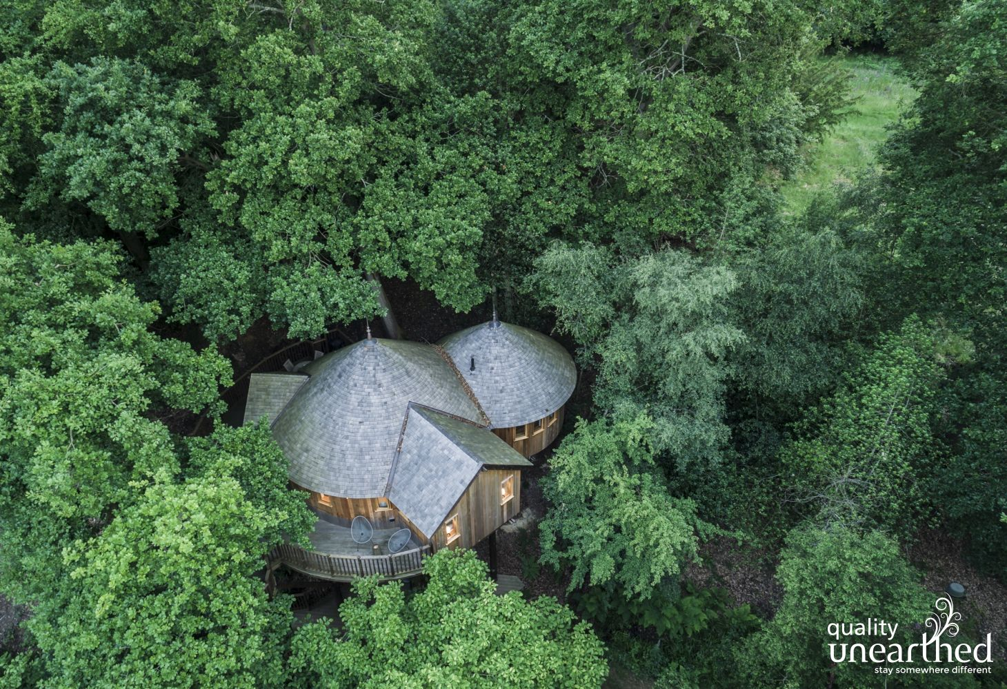 Lush Sussex woodland engulfs the luxury treehouse and its terrace