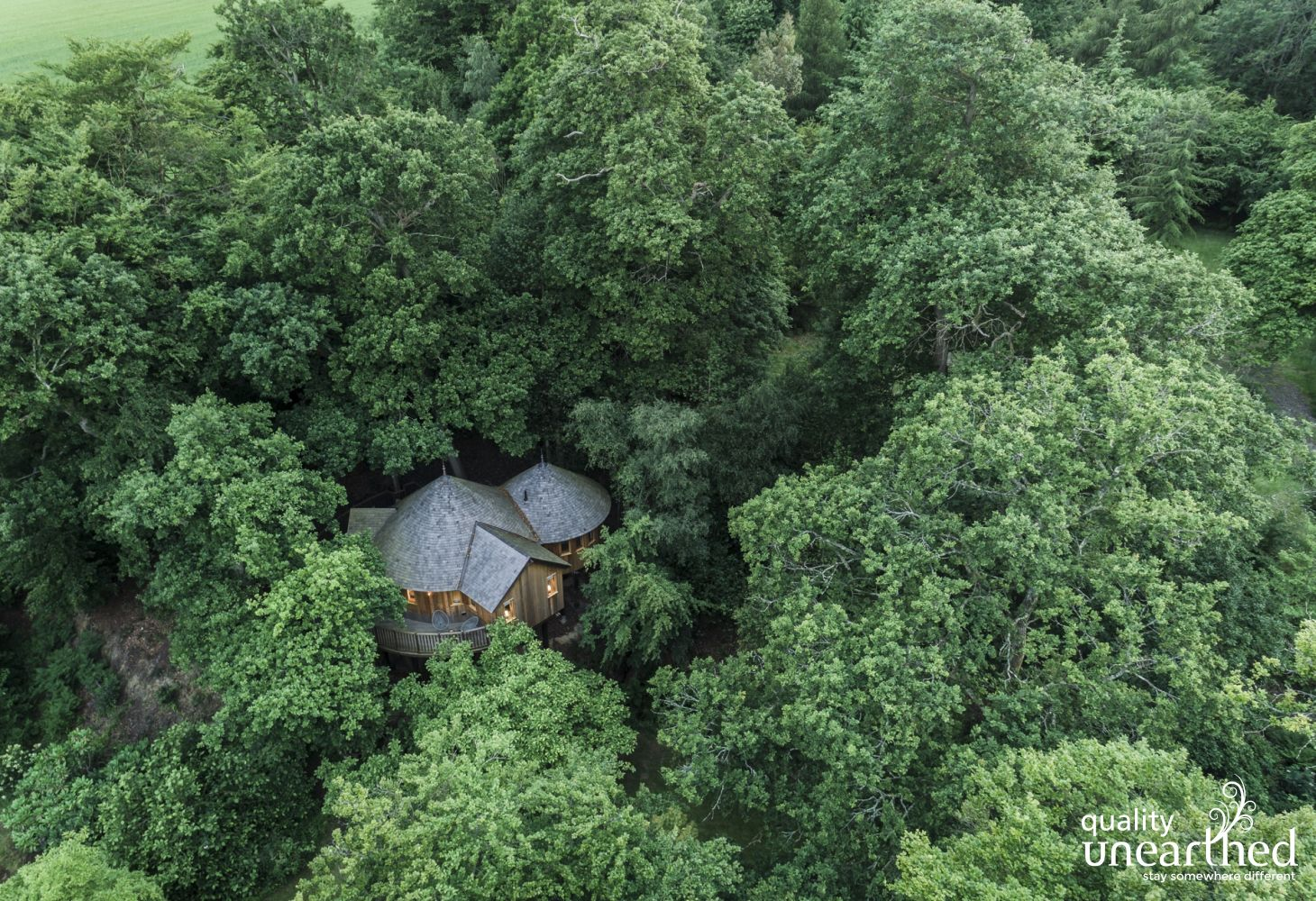 The 5 star family treehouse is truly snuggled into the Sussex woodland