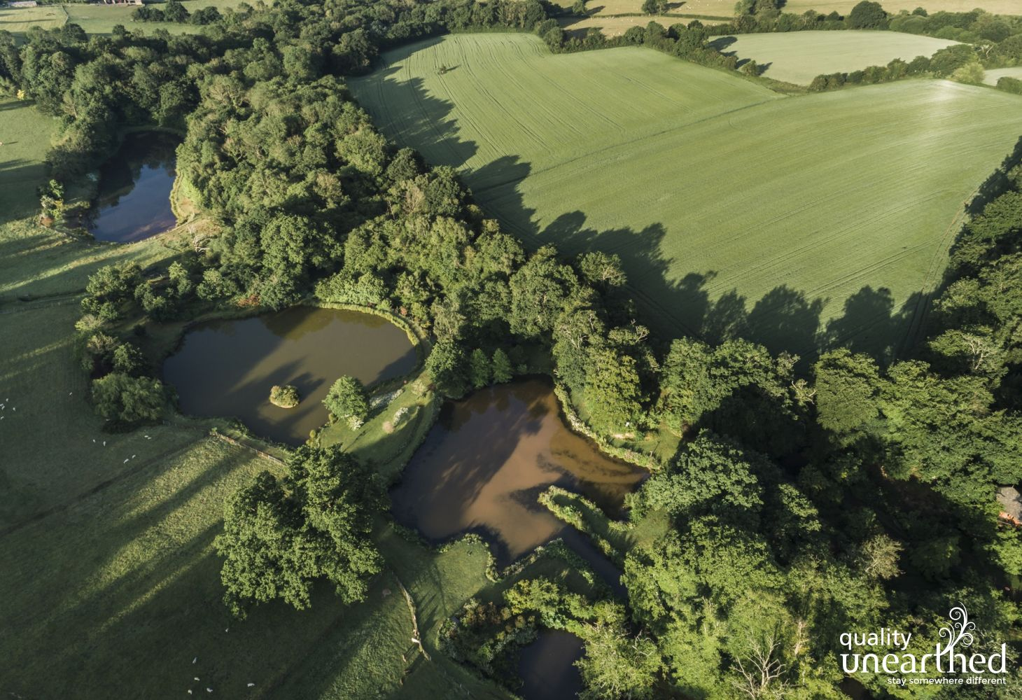Aerial view of the lakes set in woods with fields