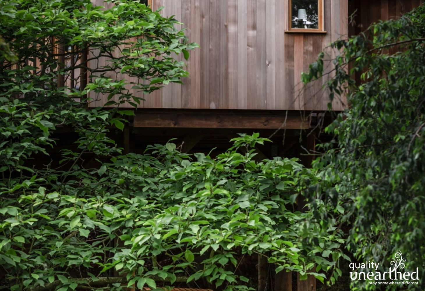 The cedar of the treehouse adds a contemporary look to its classic design