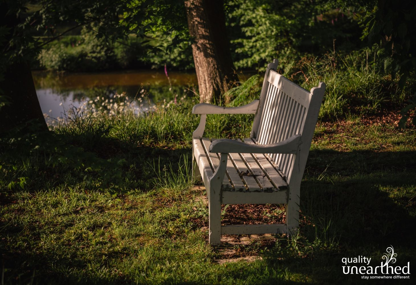 A classic wooden bench sits by the side of one of the lakes in the treehouse grounds