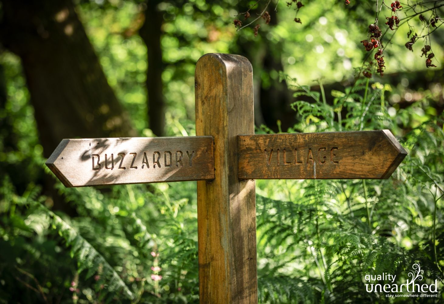 A sign to the Buzzardy Treehouse or to the village