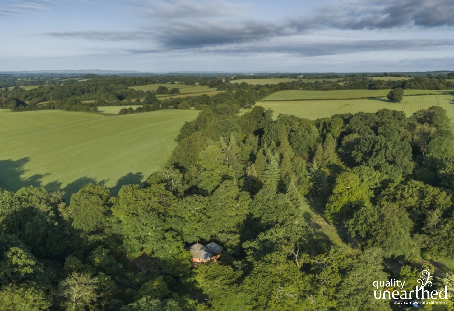 Aerial view of The Buzzardry treehouse set right in the middle of the Sussex woods with the 13 acres of private land from fields to lakes
