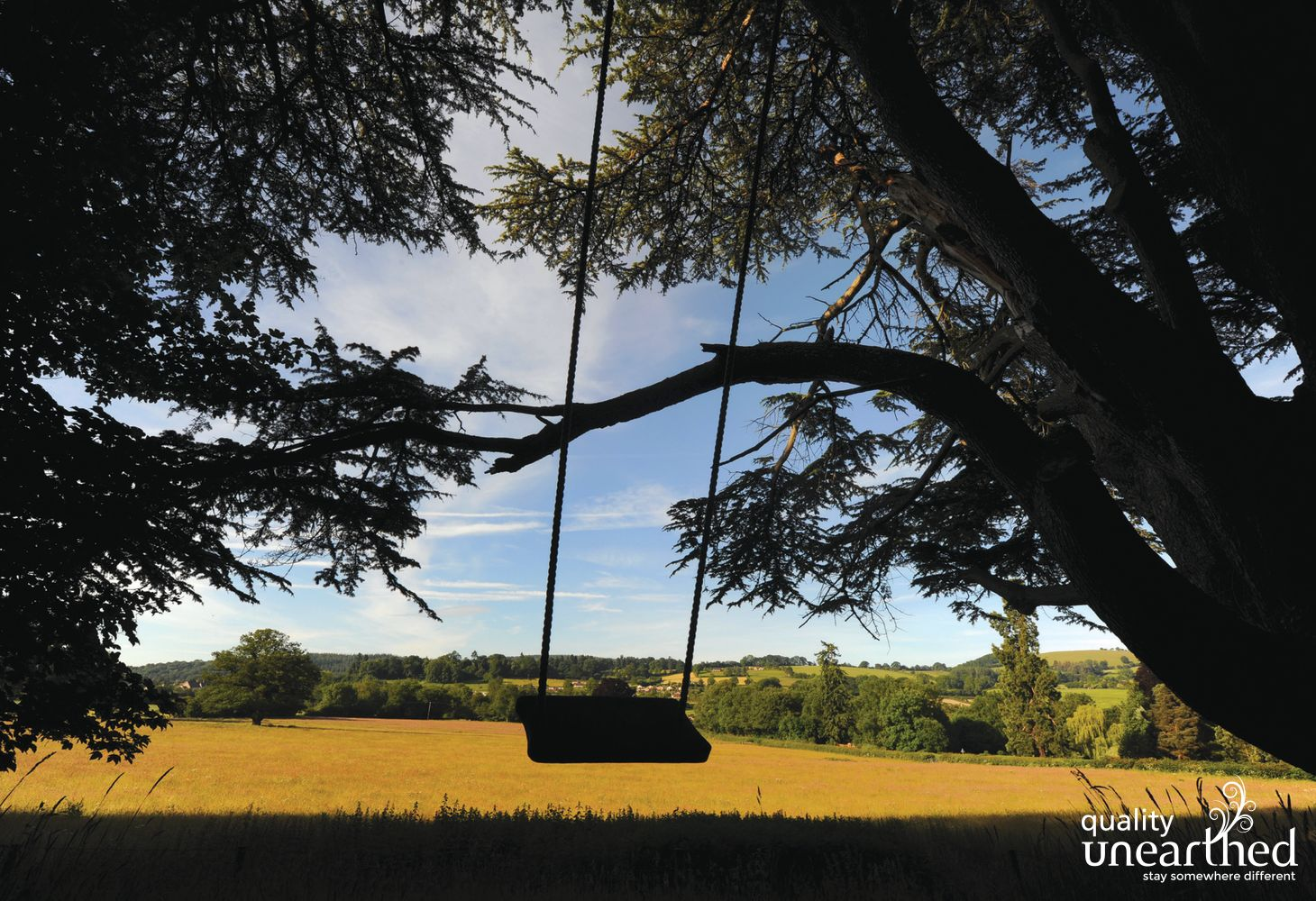 A swing moves under the boughs of the trees in the grounds of the yurt