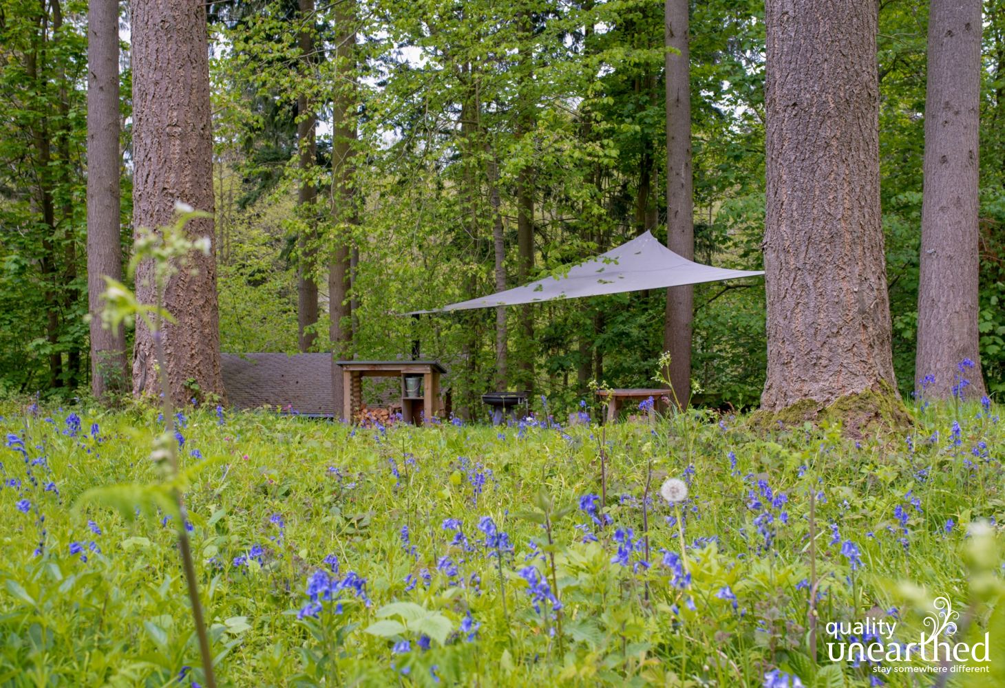 The glade at the back of the treehouse with a BBQ firepit and table