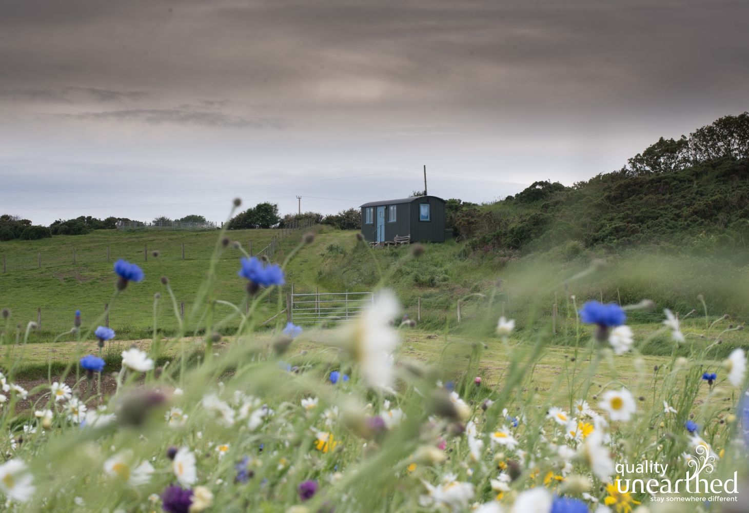 Glamping accommodation in Anglesey