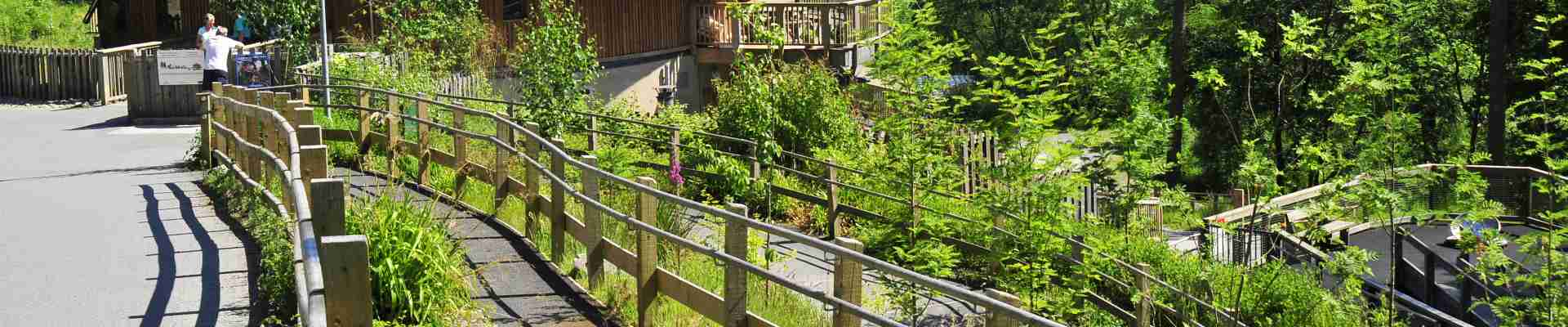 Coed y Brenin Forest Park Holiday Cottages