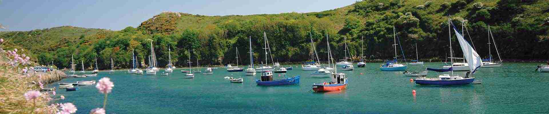Solva Holiday Cottages