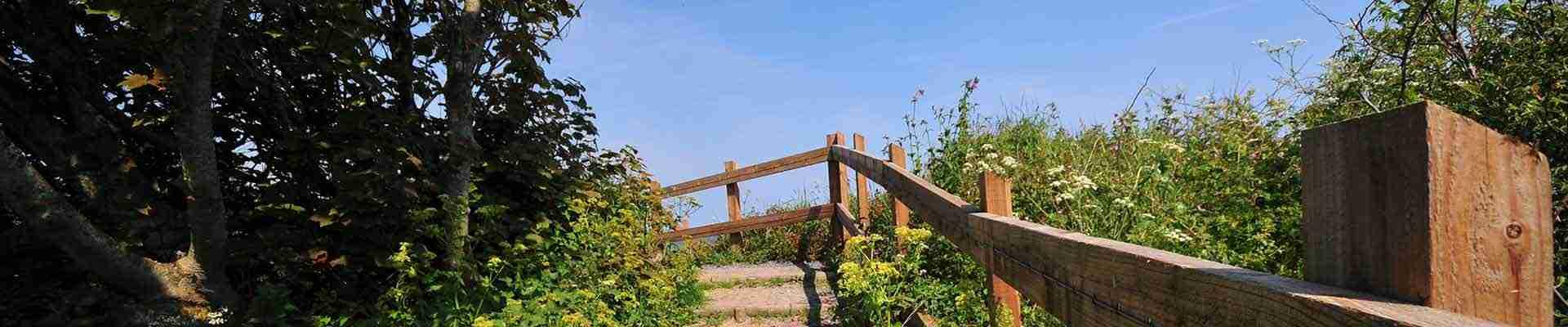 Anglesey Half Marathon (The Island Race)
