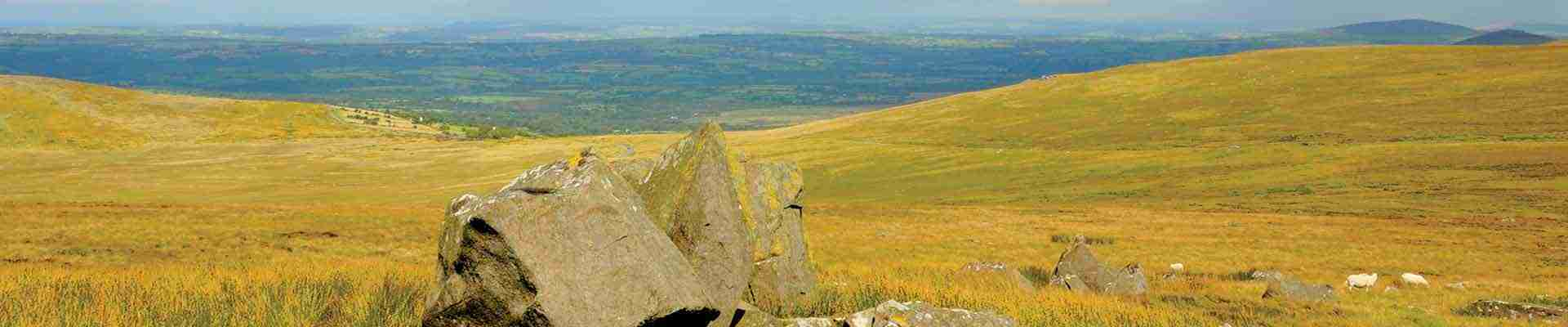Preseli Hills Holiday Cottages