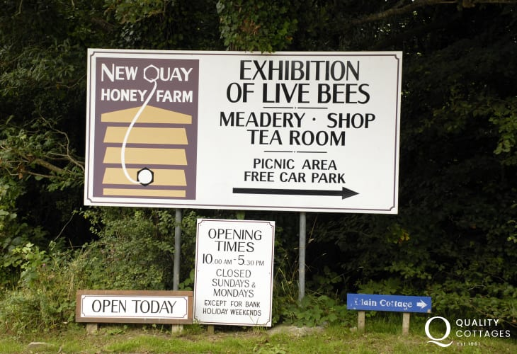New Quay Honey Farm has a unique exhibition on the fascinating life of the honey bee with a shop selling honey and honey products including mead