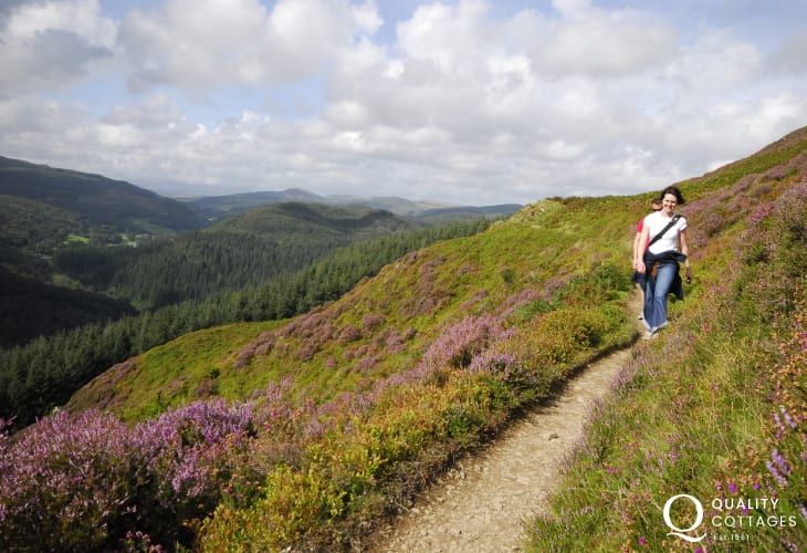 The circular 'Precipice Walk' around Cwm Bychan- wonderful scenery at anytime of the year