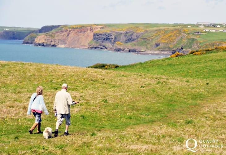 Little Haven is a short walk away across National Trust fields