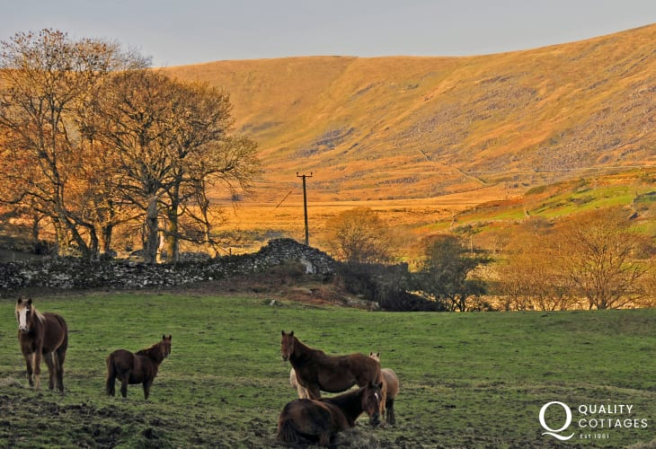 Bathed in the setting sun, this mountainside holds the precious gold mine known as Clogau St David's. Located at Bontddu near Barmouth