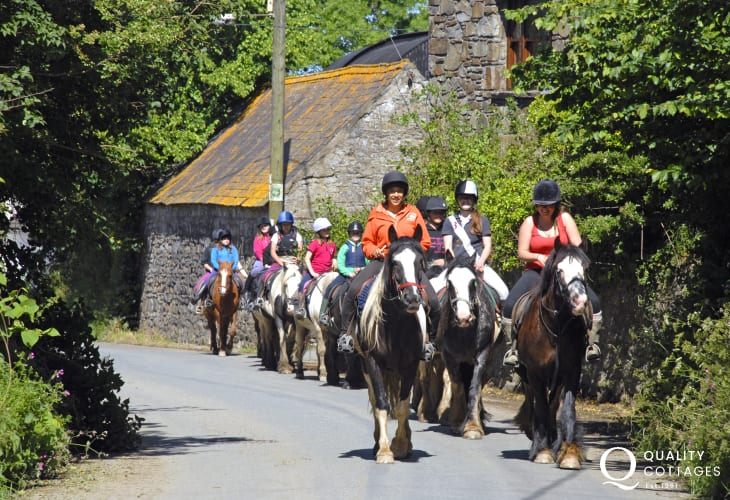 The spectacular Pembrokeshire National Park is home of Llanwnda Riding Stables in nearby Goodwick. All levels of experience are catered for. Enjoy trekking along bridleways and quiet country lanes