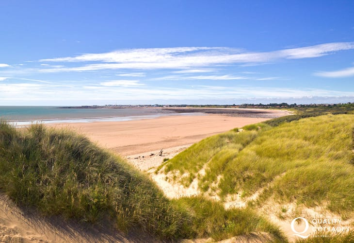 Nearby Merthy Mawr Warren National Nature Reserve is home to 'The Big Dipper'- one of the tallest dunes in Europe!