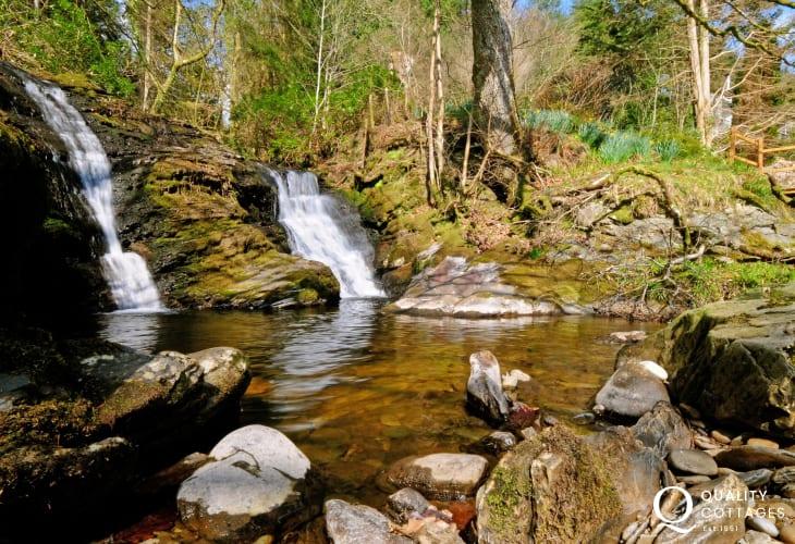 Magnificent Hafod Estate walks