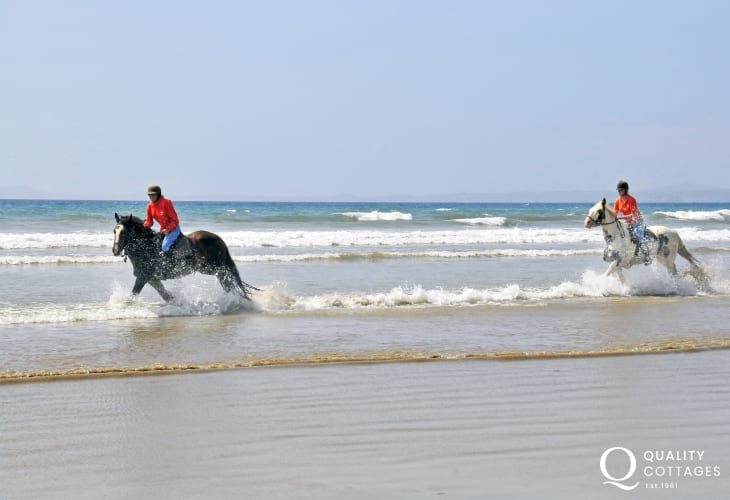 Galloping through the waves along Druidston Beach is an unforgettable experience and Nolton Haven Riding stables cater for all levels of experience