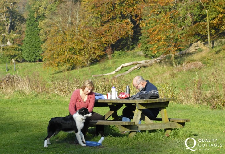 Enjoying a picnic in the woods - many of our cottages welcome pets