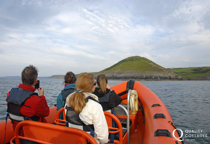 A Cardigan Bay boat trip is ideal for spotting bottlenose dolphins, sea birds and seals